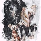 Chinese Crested /Ghost by BarbBarcikKeith
