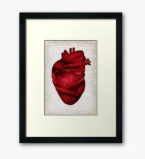 Red Scarlet Blood Rose Heart Framed Print