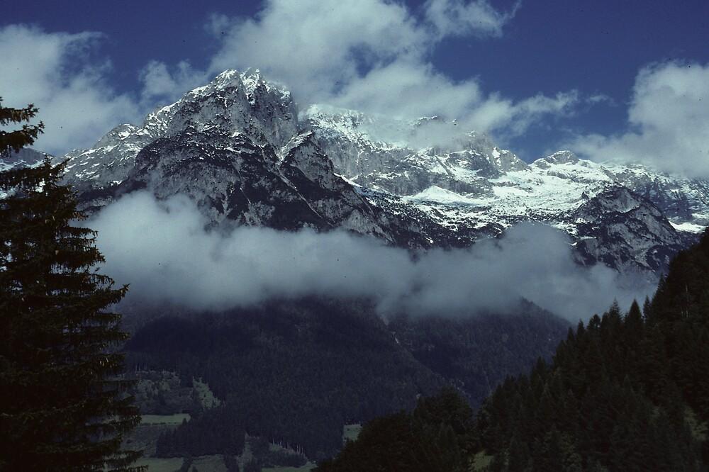 In the Austrian Alps by bertspix