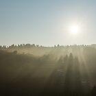 Morning Mist Sunrays by Georgia Mizuleva