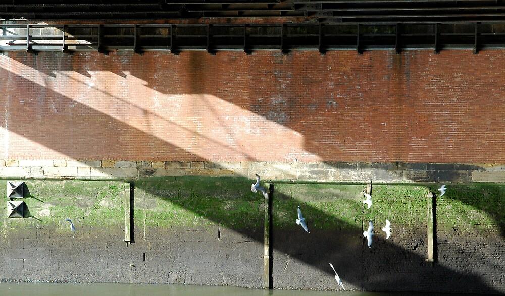 Under the bridge by Andy Matthews