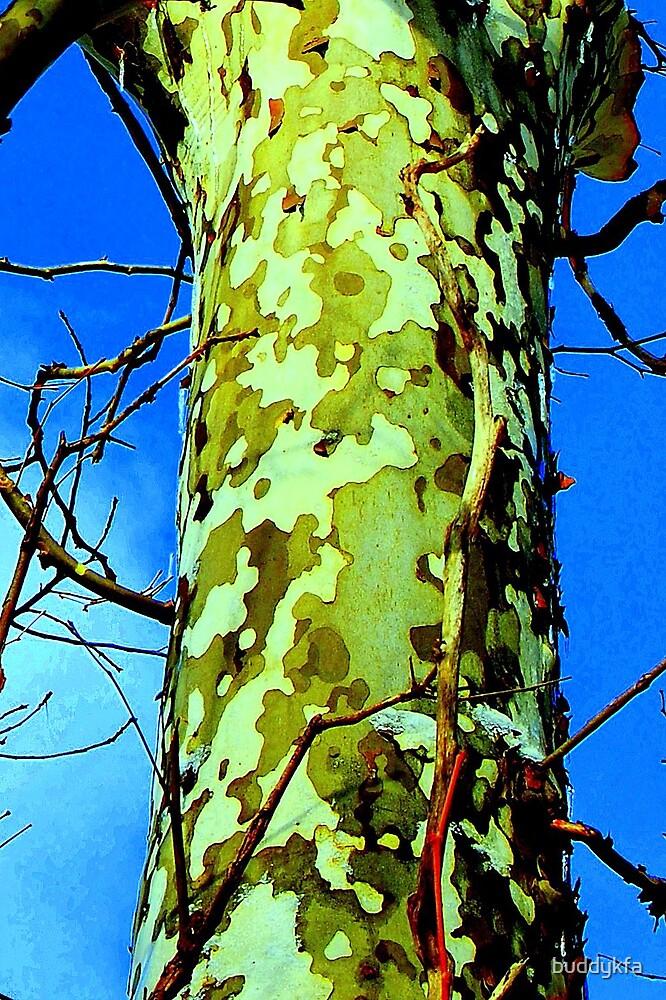 Camouflage by buddykfa