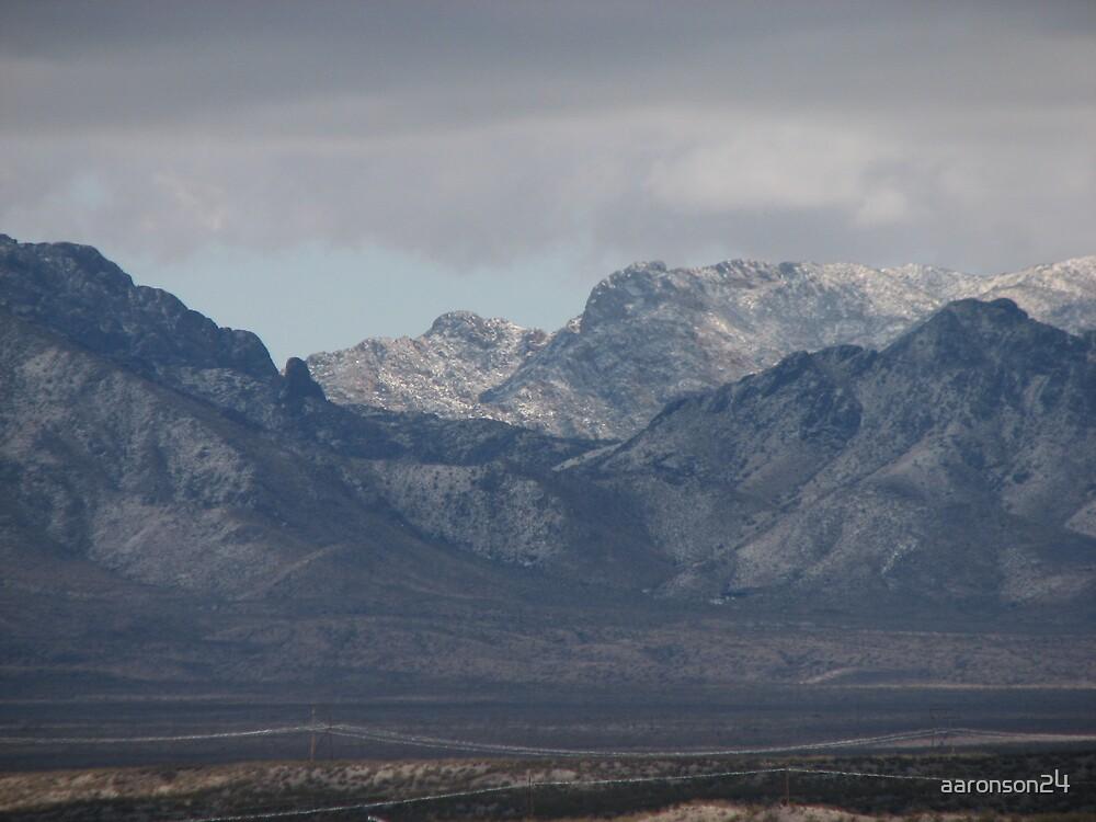 Organ Mountain Snow by aaronson24