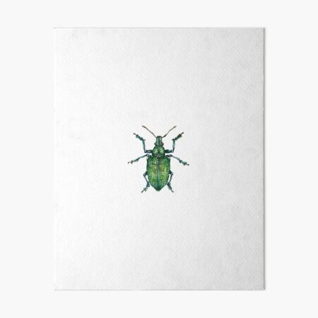 Green Bug Art Board Print