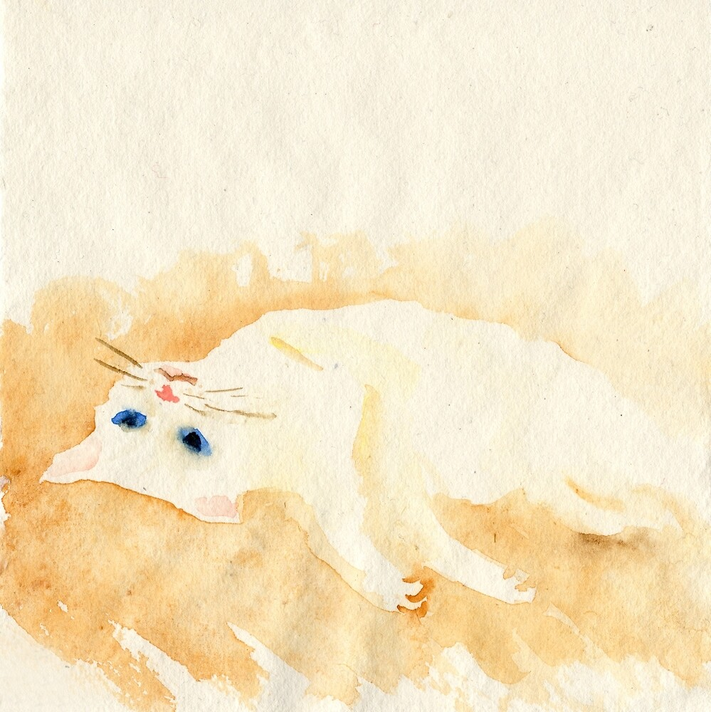 White cat lying on the floor by YumiKudo