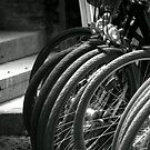 Cycles by Robert Meyer