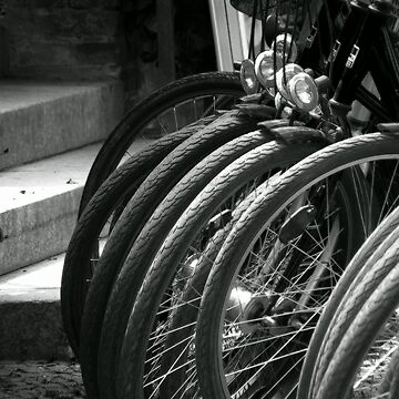 Cycles by RGMeyer