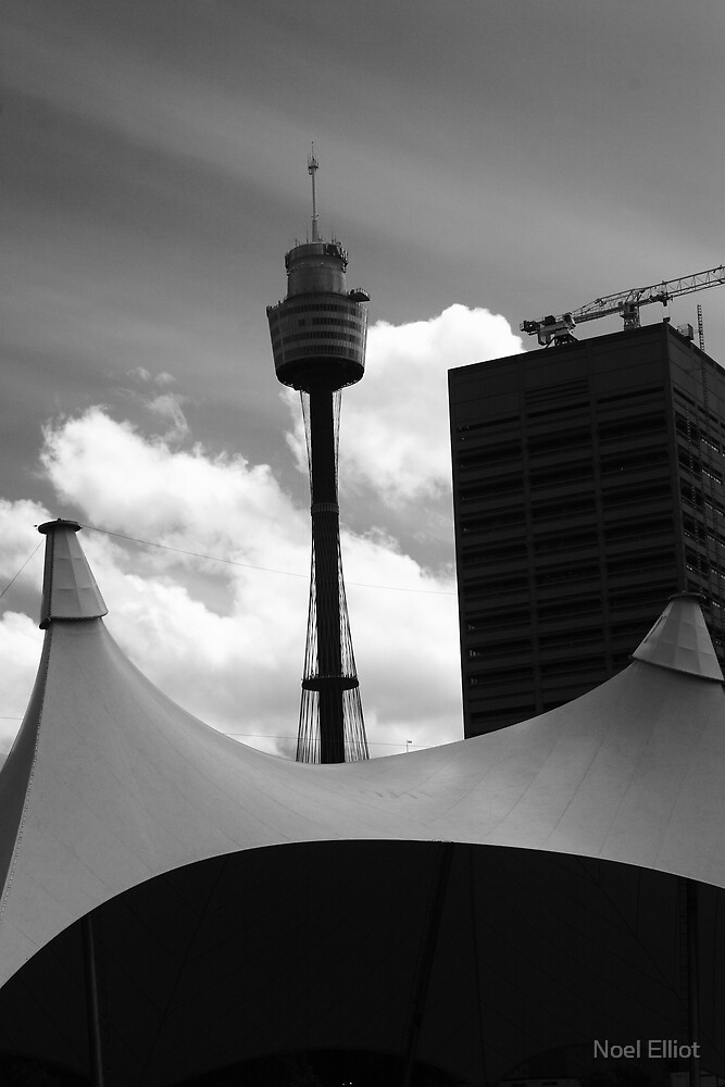 Sydney Tower by Noel Elliot
