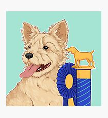 JO / Jack Russell Dog Pet Portrait / show dog happy terrier ribbon trophy proud smiling dog Photographic Print