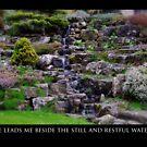 Restful Waters by Rebs O