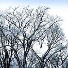 The LOVE Tree by vividpeach