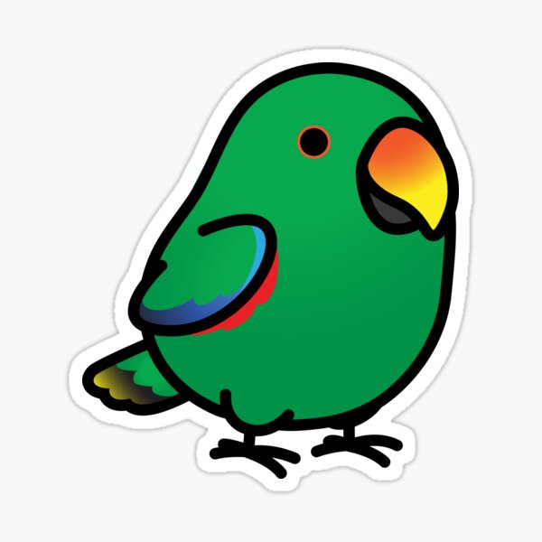 Chubby Male Eclectus Parrot Sticker