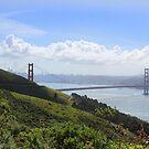 San Francisco by Paula Bielnicka