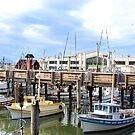 Fishermen's Wharf by Paula Bielnicka