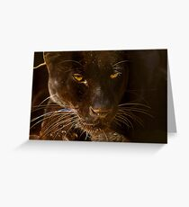Obsidian Silk - Black Leopard Greeting Card
