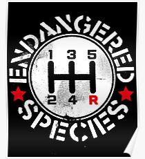 Manual Transmission Endangered Species Poster