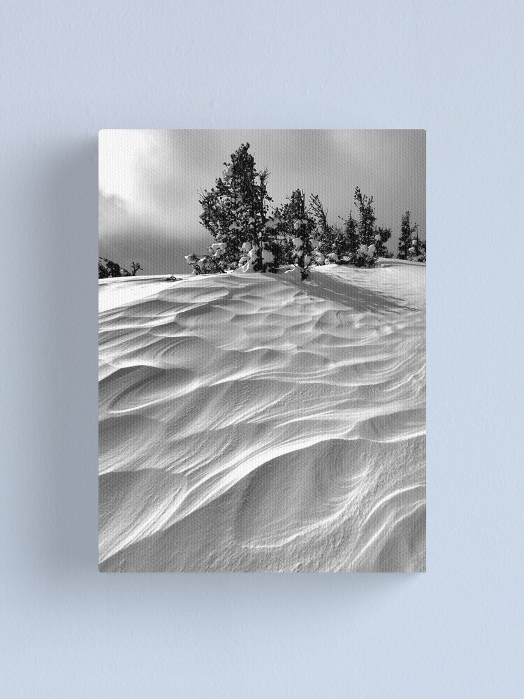 Alternate view of Winded Canvas Print