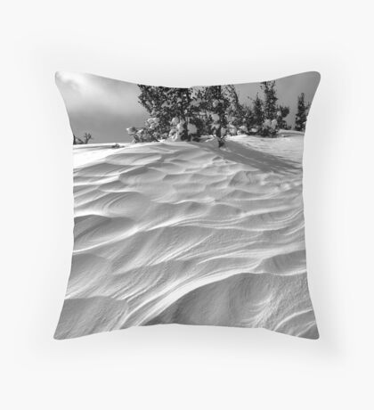 Winded Throw Pillow
