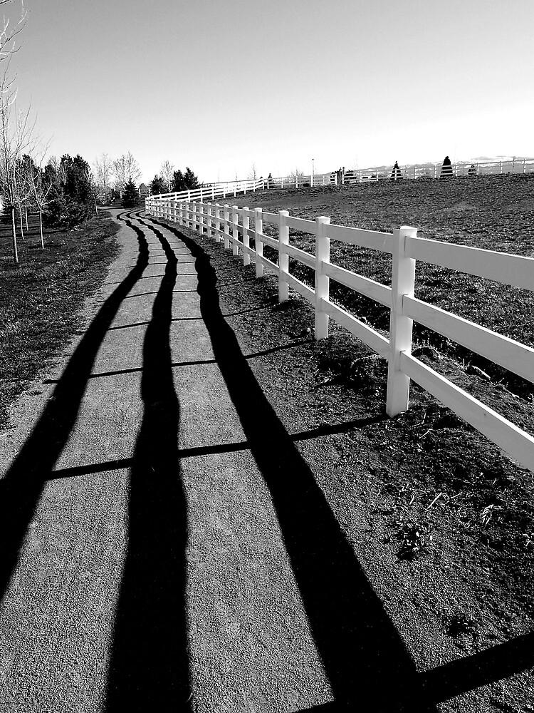 Fence Shadow by Jon  Johnson