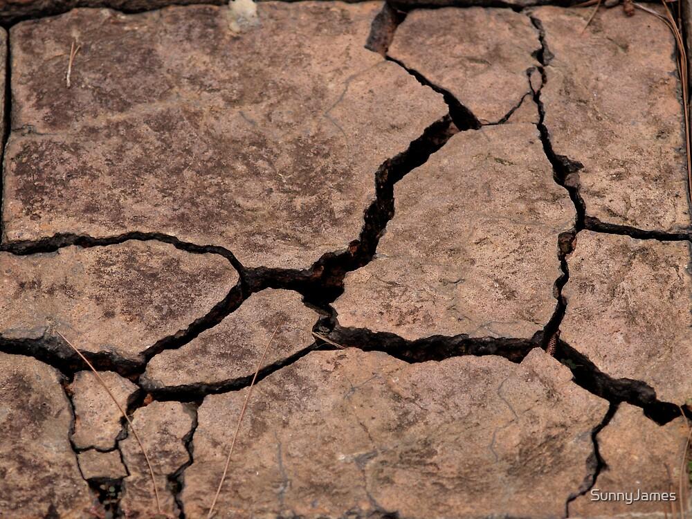 Cracked earthen tile by SunnyJames