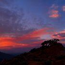 Petersen Sunset IV by Jon  Johnson