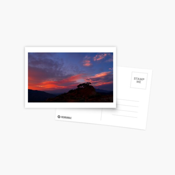 Petersen Sunset IV Postcard
