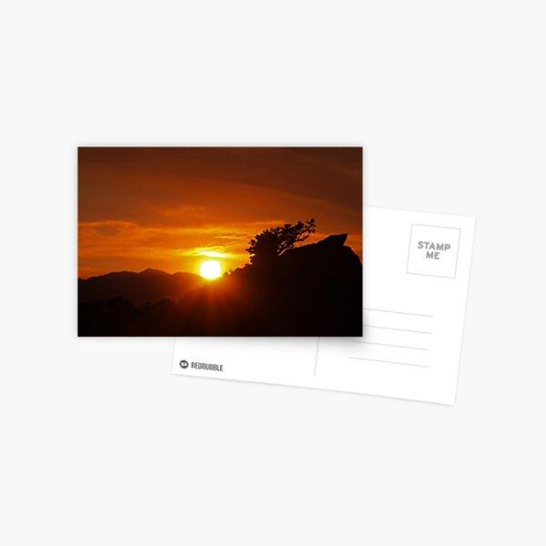 Petersen Setting Sun Postcard