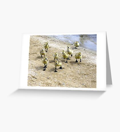 Storming the Beach Greeting Card
