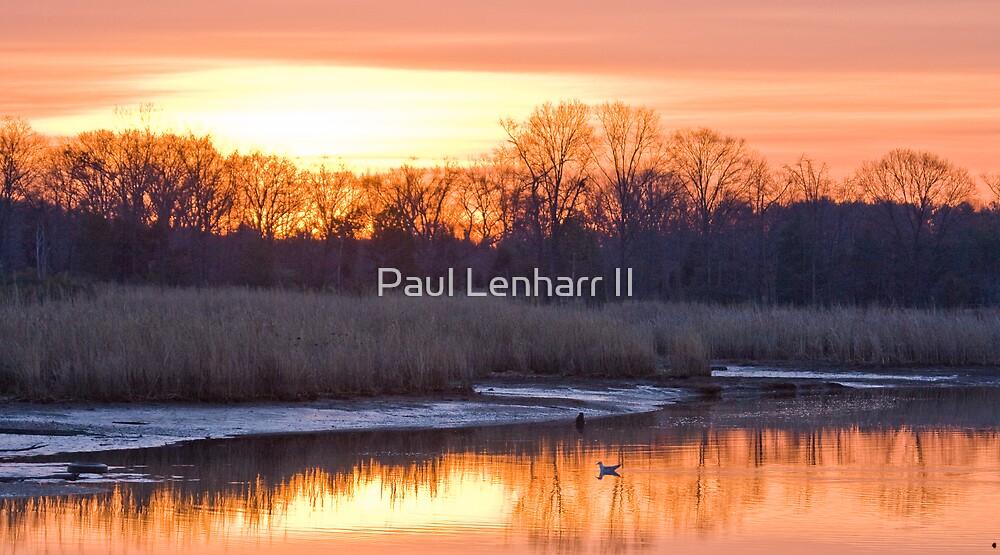 Allens Fresh 2 by Paul Lenharr II