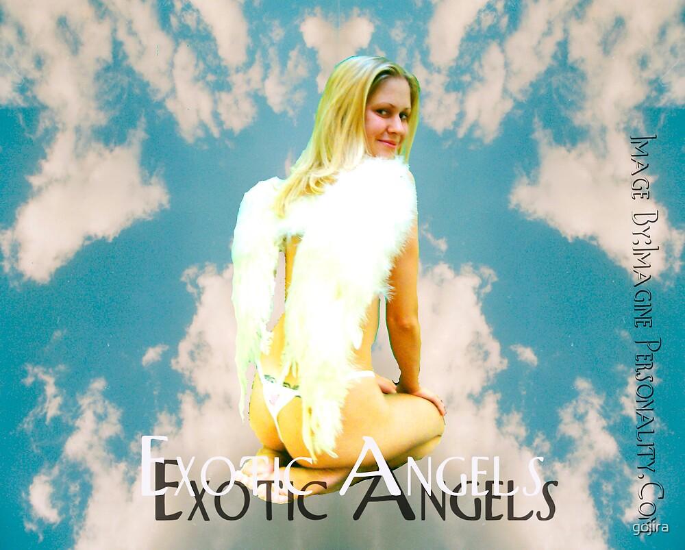 Exotic Angel by gojira