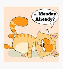 Even Cat Hates Mondays Photographic Print