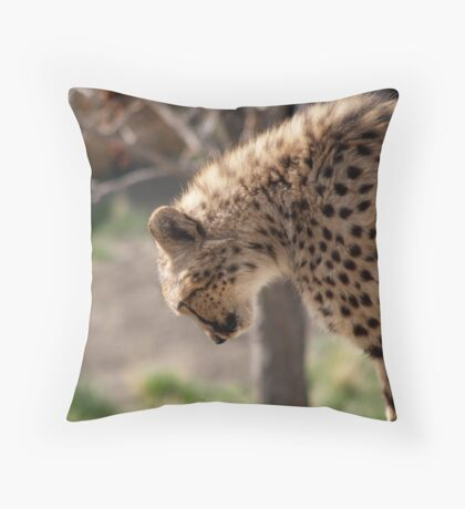 Runners to Your Marks.... Throw Pillow