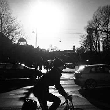 copenhagen rider by Vedran1980