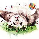 Panda von AnnaShell