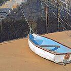 Nautical Still Life by Alexandra Lavizzari