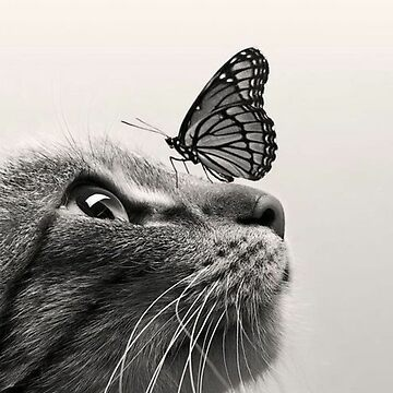 Cat and Butterfly by waarpys