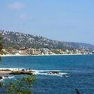 Laguna Beach Coastline by K D Graves Photography