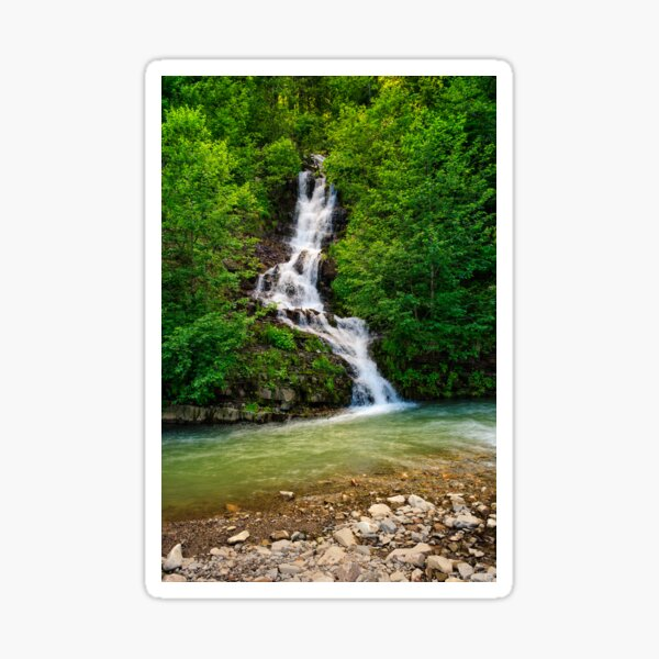 waterfall comes out of a hillside in forest Sticker