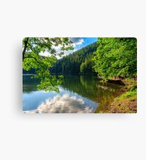 pier on mountain lake in forest Canvas Print