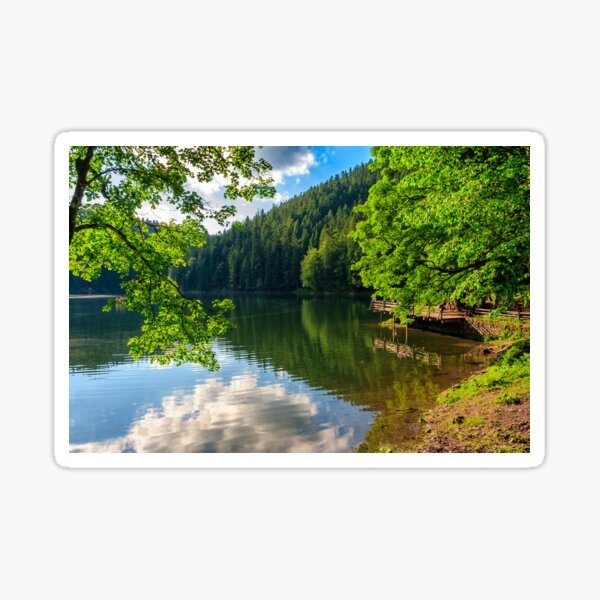 pier on mountain lake in forest Sticker