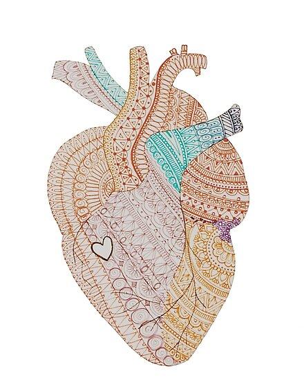 Pósters «Corazón anatómico» de Meher-Shiblee | Redbubble