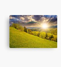 meadow with trees in mountains at sunset Canvas Print