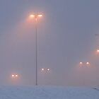 Misty winter morning by Hans Bax