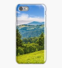 spruce forest on a mountain hill side iPhone Case/Skin