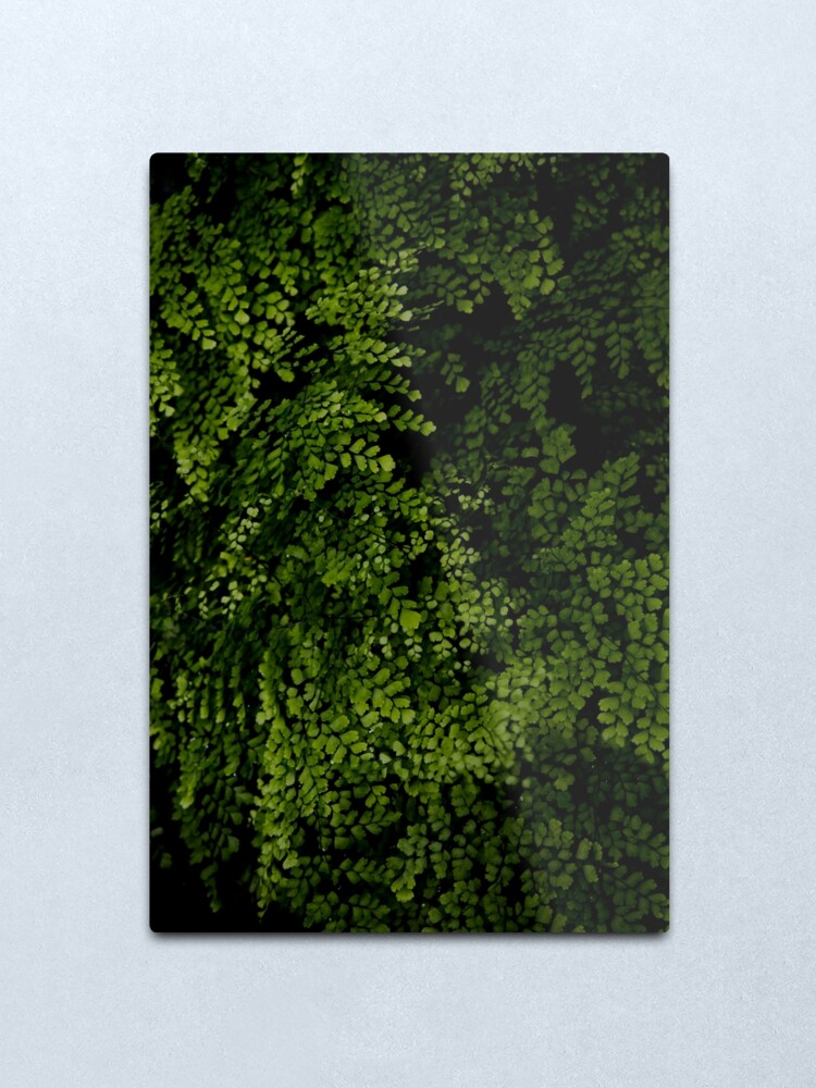 Alternate view of Small leaves.  Metal Print