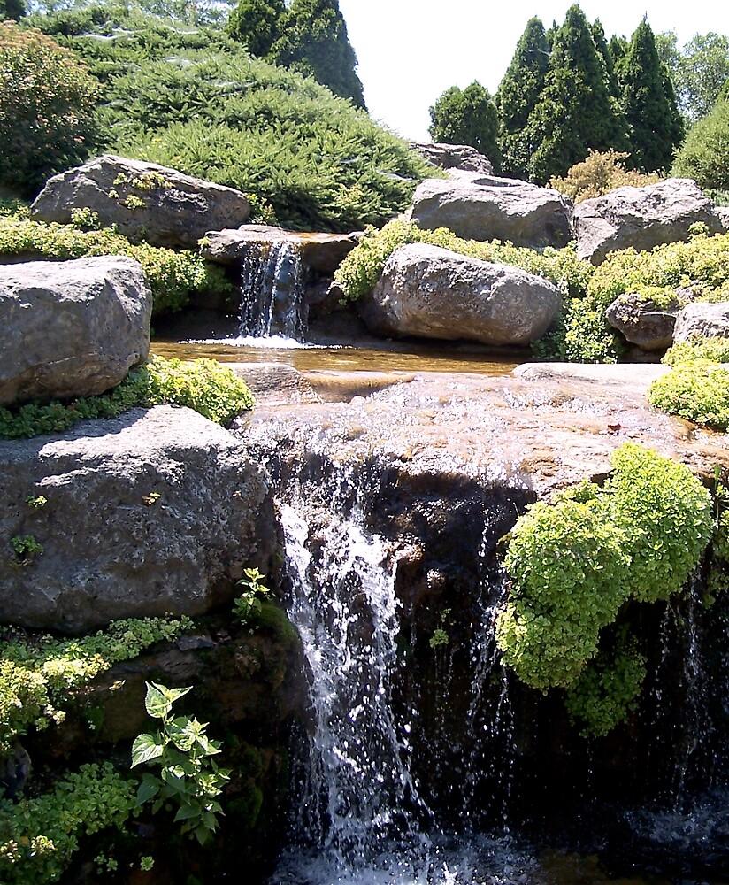 Olbrich Falls by Carolyn Bishop