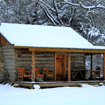 Little Cabin In The Woods by CKEphotos