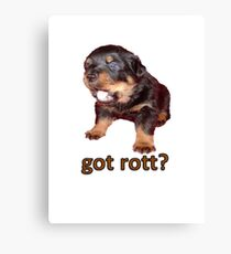 Got Rott? Rottweiler Owner  Canvas Print