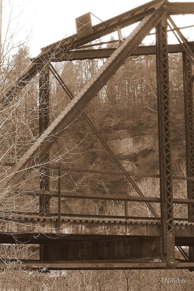 Bridge to Nowhere (Sepia) by TNRidrnr