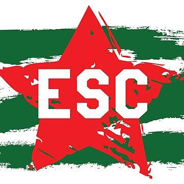 ESC - Star [2018, Lisbon] by lazarusheart